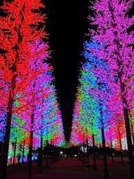 tree lighting ideas. 25 best lights in trees ideas on pinterest backyards simple house and christmas jars tree lighting