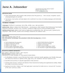 Entry Level It Resume Examples Extraordinary Entry Level Programmer Resume Java Analyst Programmer Resume Samples
