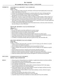 Data Modeler Resume Sample Architect Data Resume Samples Velvet Jobs 5