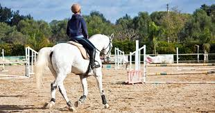 scared stiff how to overcome your fear of horseback riding horse insurance quotes compare the market 44billionlater