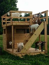 46 fresh how to build a goat house plans