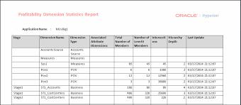 Detailed Profitability Dimension Statistics Report Example