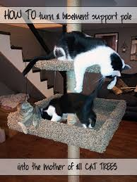 turn your pole into a cat tree materials and cost