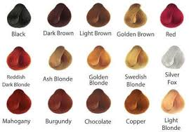 Surya Brasil Color Chart Buy Surya Henna Cream From Canada At Well Ca Free Shipping