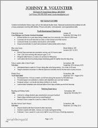 Modern Creative Resume Example