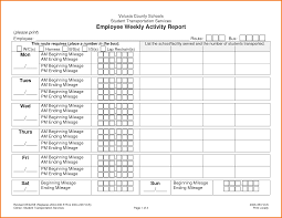 6+ Weekly Activity Report Template | Expense Report