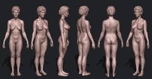Best 98 Anatomy Human Female Body images on Pinterest Art.