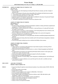 Nursin Resume Assistant Director Nursing Resume Samples Velvet Jobs