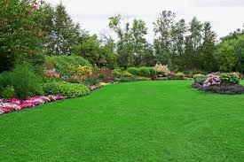Nice-yards & Small Yard Design Stylish Nice Yards Amazing Nice Front Yards  Yard Landscaping Ideas The Small Front