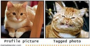 funny-facebook-memes.jpg via Relatably.com