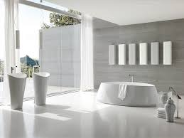 Free Standing Bathroom Accessories Bathroom Ideas Tall Frameless Glass Bathroom Storage On Modern
