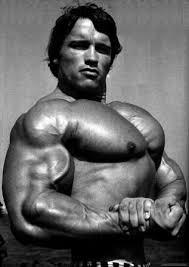 Arnold Gym Workout Chart Arnold Schwarzenegger Workout Routine Workoutinfoguru