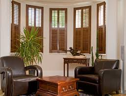 image of amazing window shutters interior