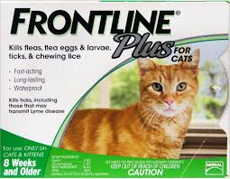 Frontline Plus Flea Tick Cat Kitten Treatment 3 Treatments