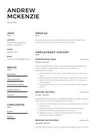 Resume Templates Google Docs Entry Level Resume Template Sample ...