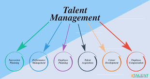 Talent Management System Components To Look For In A Talent Management System