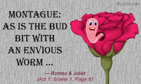 epic must examples of personification in romeo and juliet montague says as is the bud bit an envious worm romeo