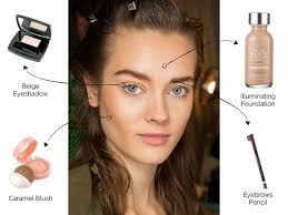 basic makeup looks. how to remake this natural look basic makeup looks