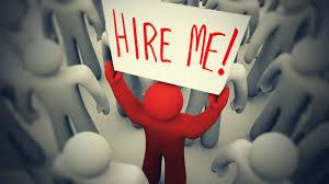 academic job interviews dr nadine muller