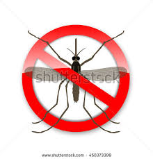mosquito icon vector flat icon isolated on the white background in a red crossed out