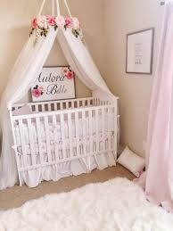 Ideas: Luxury Crown Crib Canopy For Your Baby — Metroplexepita.org