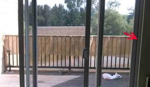 exterior door with window and dog door. exterior door with window and dog built