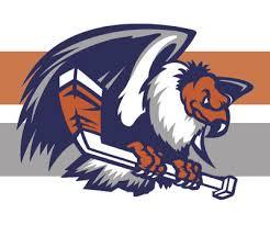 condors logo