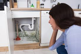 causes of mold in the kitchen and how