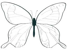 Printable Butterfly Outline 3d Butterfly Template Free Naomijorge Co