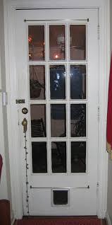 exterior door with dog door. exterior door with dog