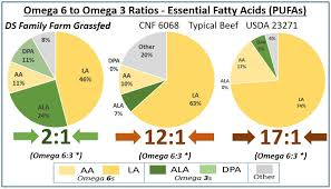 Grassfed Beef Fat Analysis Omega 6 To 3 Ratio Ds