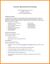 Resume Summary Examples 100 Resume Professional Summary Applicationleter 24