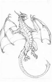 amazing drawings of dragons bing images