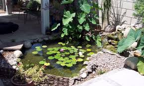 Small Picture 51 Small Garden Pond Design Ideas 21 Garden Design and style