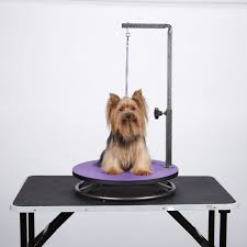 diy pet grooming table awesome 471 best peluqueria canina images on of 40 awesome diy