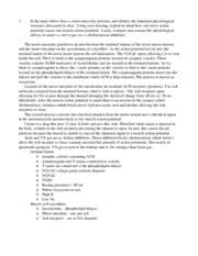 bio physio exam essays in the space below explain in  3 pages bio 336 physio exam 1 essays