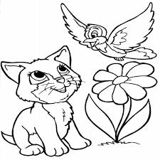 Coloriage Chat Et Oiseau Imprimer Destin Coloriage De Chat A