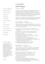 Resume Examples For Sales Manager Sales Executive Resume Resume ...