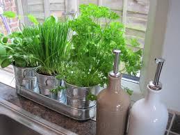 Kitchen Garden Window Garden Windows For Kitchen Hd Photos Gallery