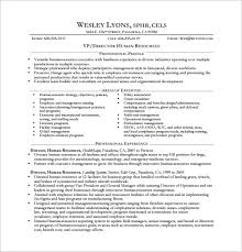 mis manager resume executive resume template 14 free word excel pdf format