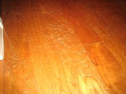 best flooring for pets. Best Laminate Flooring For Dogs Pets Creative Design