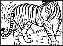 Small Picture Realistic Tiger Coloring Pages 9146 Bestofcoloringcom