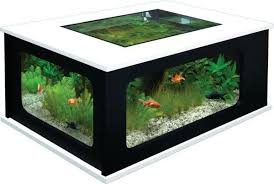 coffee-table-aquarium-7