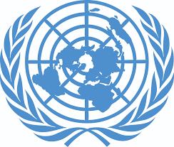 Image result for un logo