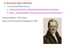 ii darwin s contributions a overview b argument evidence for  thomas malthus 1766 1834 essay on the principle of population 1798