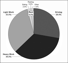 Pie Chart Proportion Of Tasks Performed During An Average