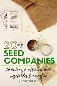 garden seed companies. Are You A Beginner Gardener With No Idea Where To Start? Whether You\u0027re Garden Seed Companies