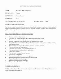 Resume Description Examples Resume Job Description Examples Fresh Work Profile Examples 100 28