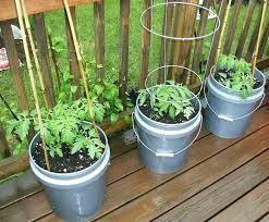 small container gardening vegetables decorative balcony vegetable garden ideas build gardens small container gardening vegetables best