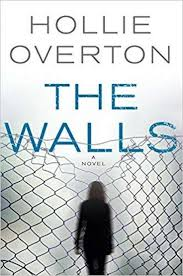 Small Picture Book review Overtons The Walls is built on a false premise